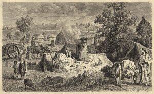 Село Василовци в средата на 19 век. Гравюра от Феликс Каниц,