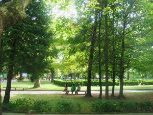 Парк в зелено | снимка: общ. Вършец