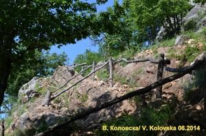 "По пътя | Снимка: ПП ""Врачански Балкан"""