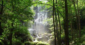Чипровския водопад   снимка: visit.chiprovtsi.bg